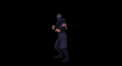 Ninja animation