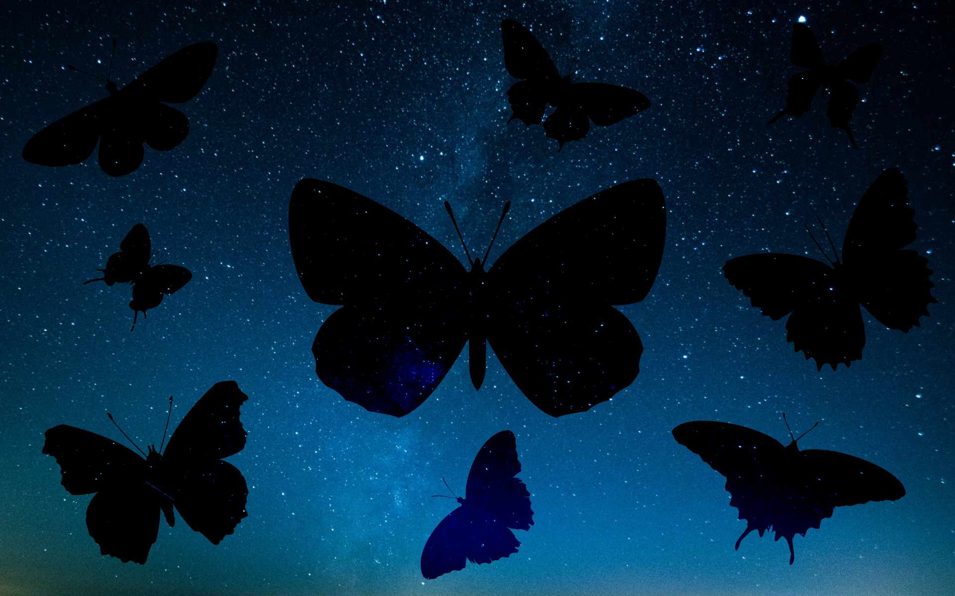 20 vector butterfly silhouettes